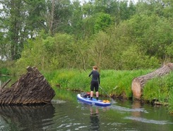 Spreewald SUP sitio de stand up paddle / paddle surf en Alemania