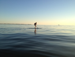 PUC Pier paddle board spot in Canada