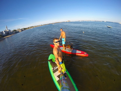 Provincetown harbor paddle board spot in United States
