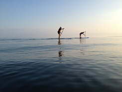 Everett Point paddle board spot in Canada