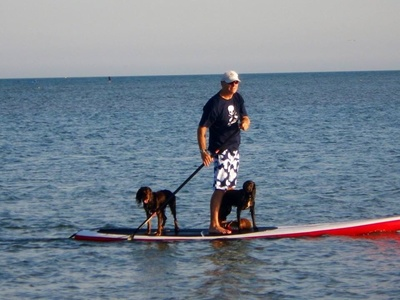 Hayling island paddle board spot in United Kingdom