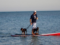 Hayling island spot de stand up paddle en Royaume-Uni