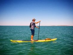 Hearsons cove sitio de stand up paddle / paddle surf en Australia