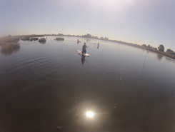 Ria de Aveiro spot de stand up paddle en Portugal