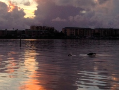 Madeira Beach Florida paddle board spot in United States