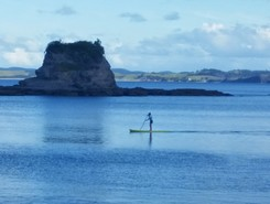 Leigh paddle board spot in New Zealand