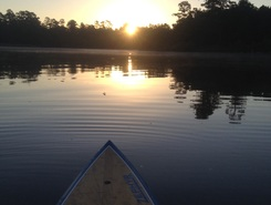 Lake Woodlands spot de stand up paddle en États-Unis