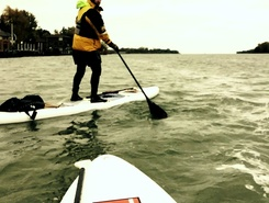 Detroit River from Lake St. Clair to Lake Erie paddle board spot in Canada