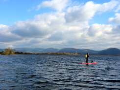 Lake Cerknica sitio de stand up paddle / paddle surf en Eslovenia