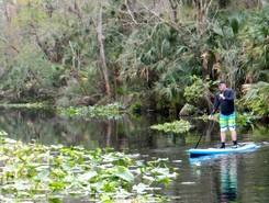 Wekiva Springs State Park, Florida paddle board spot in United States