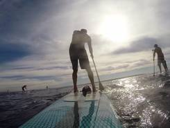Rubee 2 miles out from mission beach sitio de stand up paddle / paddle surf en Estados Unidos