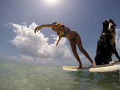 Ninjas do Sup sitio de stand up paddle / paddle surf en Brasil