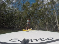 Budds Beach spot de stand up paddle en Australie