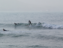 Immessouane - The Bay spot de stand up paddle en Maroc