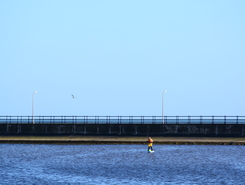 Amble Pier Lagoon spot de stand up paddle en Royaume-Uni