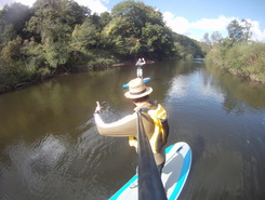 Kerne Bridge start spot de stand up paddle en Royaume-Uni