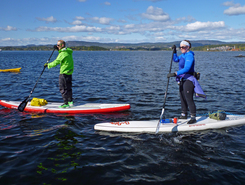 Oslo fjord paddle board spot in Norway