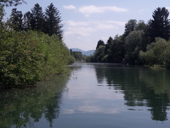 Ižica River paddle board spot in Slovenia