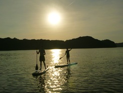 Old Harrison Islands, TN paddle board spot in United States