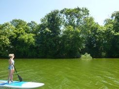 Old Harrison Islands, TN spot de SUP em Estados Unidos