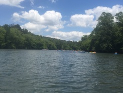 Chattahoochee River at Azalea Park sitio de stand up paddle / paddle surf en Estados Unidos