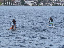 Fähre Horgen sitio de stand up paddle / paddle surf en Suiza