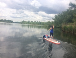 Hollandse Biesbosch paddle board spot in Netherlands