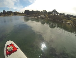 Monterey  Bay paddle board spot in United States
