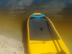 Praia do Sudoeste paddle board spot in Brazil