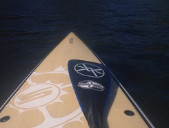 Tryon Cove sitio de stand up paddle / paddle surf en Estados Unidos