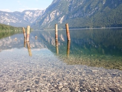 Lake Bohinj paddle board spot in Slovenia