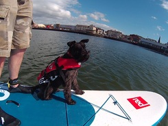 New Brighton Marine Lake paddle board spot in United Kingdom