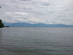 Lac Léman - Allaman paddle board spot in Switzerland