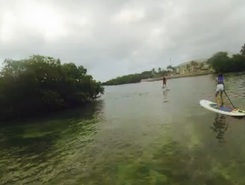 Key west, florida paddle board spot in United States