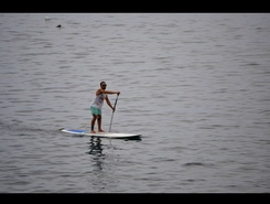 Ribeira das Galinhas paddle board spot in Portugal
