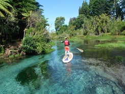 Hamurana springs sitio de stand up paddle / paddle surf en Nueva Zelanda