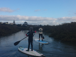 Te Atatu Peninsula paddle board spot in New Zealand