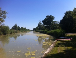 Remontée canal Charente paddle board spot in France