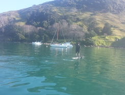 Pilot bay paddle board spot in New Zealand