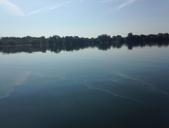 Lake Nokomis  paddle board spot in United States