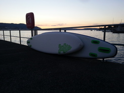 Zollikon - Seestrasse paddle board spot in Switzerland