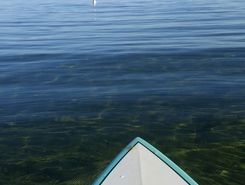 state line beach spot de stand up paddle en États-Unis