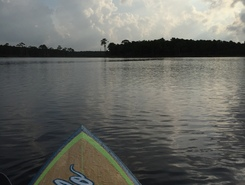 Camp Creek Lake spot de stand up paddle en États-Unis