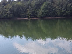 Sava river, Trboje lake paddle board spot in Slovenia