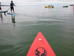 Alpine Lake Tour Sciez-sur-Léman paddle board spot in France