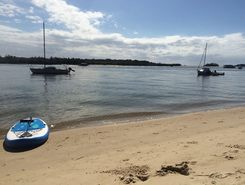 Noosa River paddle board spot in Australia