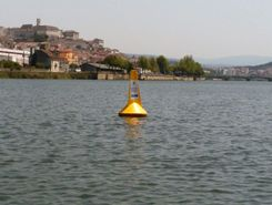 Mondego paddle board spot in Portugal