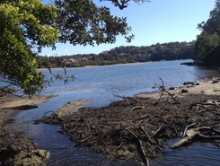 Gymea bay paddle board spot in Australia