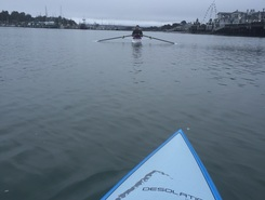 Humboldt bay paddle board spot in United States