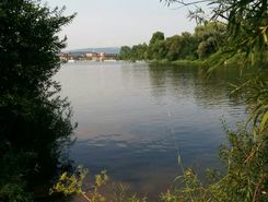 Weser Hameln paddle board spot in Germany